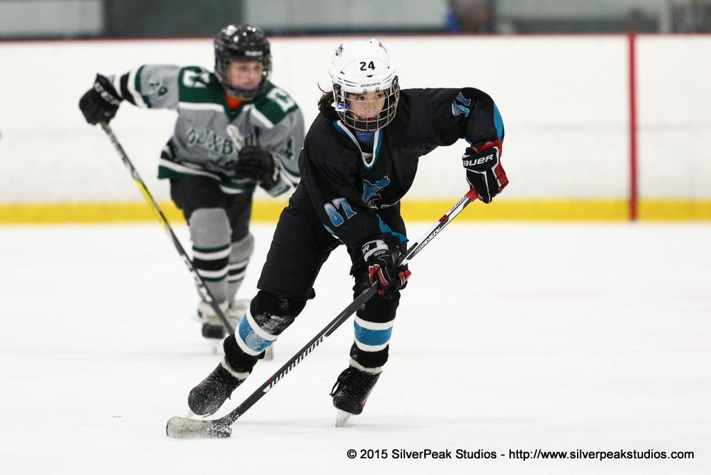 2018 Lobster Pot Hockey Tournament Team Action Shots Photo Package | SilverPeak Studios