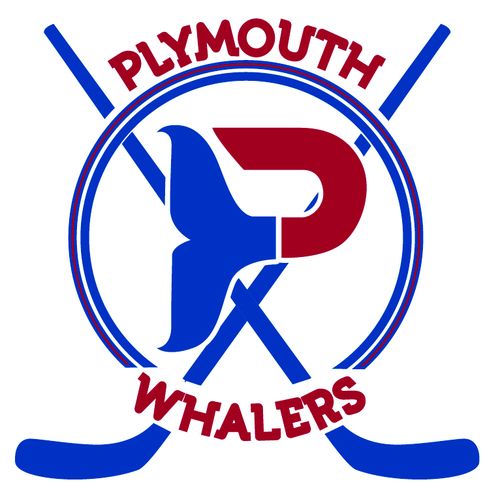 SilverPeak Studios' home team, Plymouth Youth Hockey