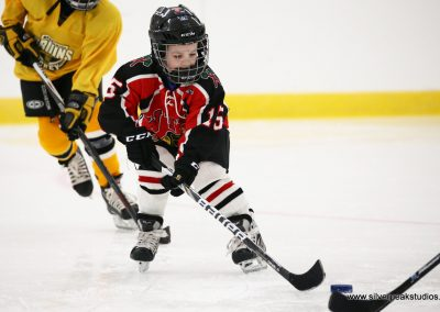 SilverPeak Studios Berkshire Thanksgiving Classic Mite Jamboree Hockey Photo 3