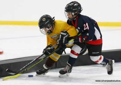 SilverPeak Studios Berkshire Thanksgiving Classic Mite Jamboree Photo Bruins vs Capitals