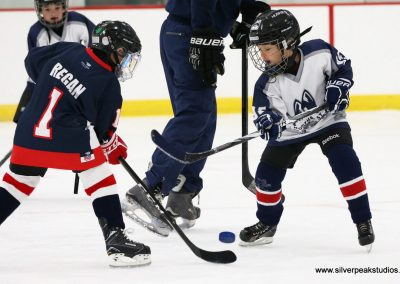 SilverPeak Studios Berkshire Thanksgiving Classic Mite Jamboree Photo Huskies Northeast