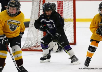 SilverPeak Studios Berkshire Thanksgiving Classic Mite Jamboree Photo Lightning Bruins