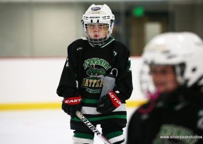 SilverPeak Studios Berkshire Thanksgiving Classic Mite Jamboree Photo Rattlers 5