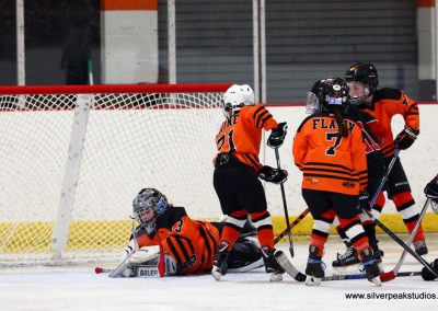 SilverPeak Studios Turkey Day Classic Hockey Tournament Save Woburn