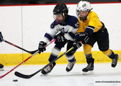SilverPeak Studios Turkey Day Classic Hockey Tournament Medford vs Andover