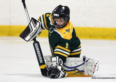 SilverPeak Studios Turkey Day Classic North Reading Hockey