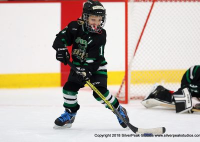 SilverPeak Studios Berkshire Mite Jamboree 2018 Samples Action shots hockey photography BRK_0274