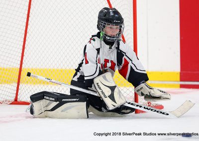 SilverPeak Studios Berkshire Mite Jamboree 2018 Samples Action shots hockey photography BRK_0327