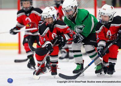 SilverPeak Studios Berkshire Mite Jamboree 2018 Samples Action shots hockey photography BRK_0945