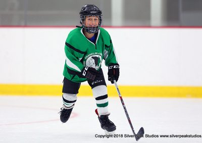 SilverPeak Studios Berkshire Mite Jamboree 2018 Samples Action shots hockey photography BRK_0954
