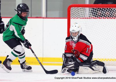 SilverPeak Studios Berkshire Mite Jamboree 2018 Samples Action shots hockey photography BRK_1003