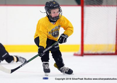 SilverPeak Studios Berkshire Mite Jamboree 2018 Samples Action shots hockey photography BRK_1502