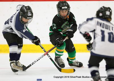 SilverPeak Studios Berkshire Mite Jamboree 2018 Samples Action shots hockey photography BRK_1981
