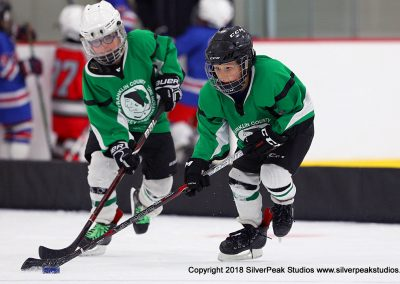 SilverPeak Studios Berkshire Mite Jamboree 2018 Samples Action shots hockey photography BRK_2110