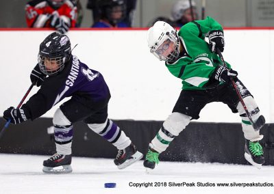 SilverPeak Studios Berkshire Mite Jamboree 2018 Samples Action shots hockey photography BRK_2124