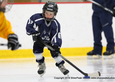 SilverPeak Studios Berkshire Mite Jamboree 2018 Samples Action shots hockey photography BRK_2584