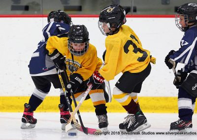 SilverPeak Studios Berkshire Mite Jamboree 2018 Samples Action shots hockey photography BRK_2828