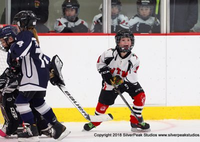 SilverPeak Studios Berkshire Mite Jamboree 2018 Samples Action shots hockey photography BRK_3063