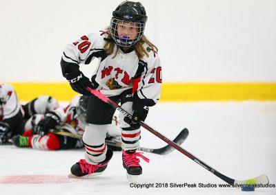 SilverPeak Studios Berkshire Mite Jamboree 2018 Samples Action shots hockey photography BRK_4057