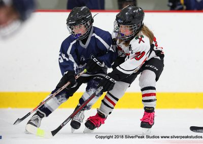SilverPeak Studios Berkshire Mite Jamboree 2018 Samples Action shots hockey photography BRK_4304