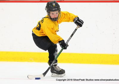 SilverPeak Studios Berkshire Mite Jamboree 2018 Samples Action shots hockey photography BRK_4427