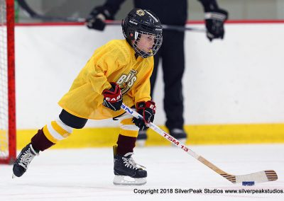 SilverPeak Studios Berkshire Mite Jamboree 2018 Samples Action shots hockey photography BRK_4457