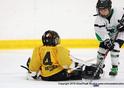 SilverPeak Studios Berkshire Mite Jamboree 2018 Samples Action shots hockey photography BRK_4592