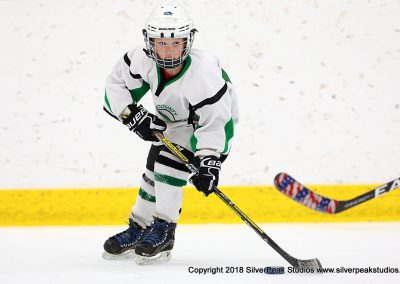 SilverPeak Studios Berkshire Mite Jamboree 2018 Samples Action shots hockey photography BRK_4604