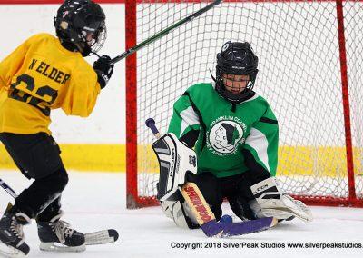 SilverPeak Studios Berkshire Mite Jamboree 2018 Samples Action shots hockey photography BRK_4633