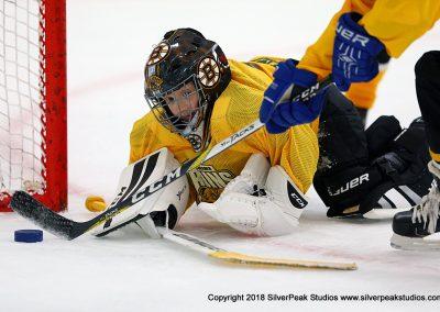 SilverPeak Studios Berkshire Mite Jamboree 2018 Samples Action shots hockey photography BRK_4677