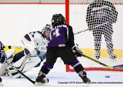 SilverPeak Studios Berkshire Mite Jamboree 2018 Samples Action shots hockey photography BRK_4878