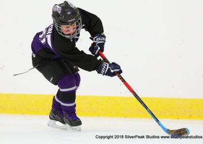 SilverPeak Studios Berkshire Mite Jamboree 2018 Samples Action shots hockey photography BRK_4962