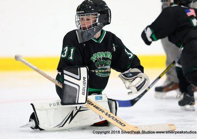 SilverPeak Studios Berkshire Mite Jamboree 2018 Samples Action shots hockey photography BRK_8475