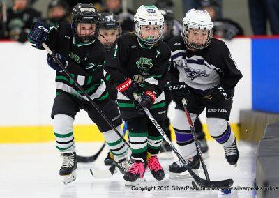 SilverPeak Studios Berkshire Mite Jamboree 2018 Samples Action shots hockey photography BRK_8542