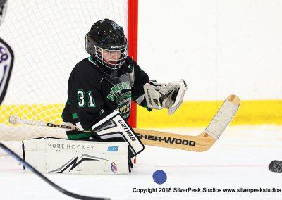 SilverPeak Studios Berkshire Mite Jamboree 2018 Samples Action shots hockey photography BRK_8709
