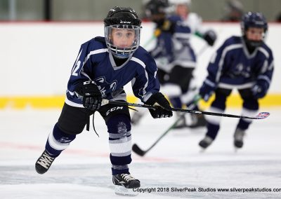 SilverPeak Studios Berkshire Mite Jamboree 2018 Samples Action shots hockey photography BRK_9089