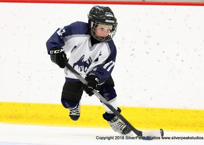 SilverPeak Studios Berkshire Mite Jamboree 2018 Samples Action shots hockey photography BRK_9337