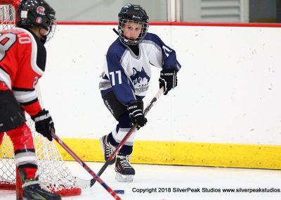 SilverPeak Studios Berkshire Mite Jamboree 2018 Samples Action shots hockey photography BRK_9387