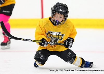 SilverPeak Studios Berkshire Mite Jamboree 2018 Samples Action shots hockey photography BRK_9621