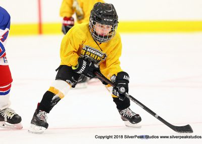 SilverPeak Studios Berkshire Mite Jamboree 2018 Samples Action shots hockey photography BRK_9667