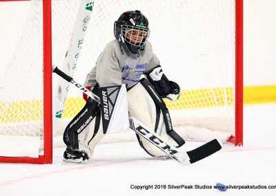 SilverPeak Studios Berkshire Mite Jamboree 2018 Samples Action shots hockey photography BRK_9852