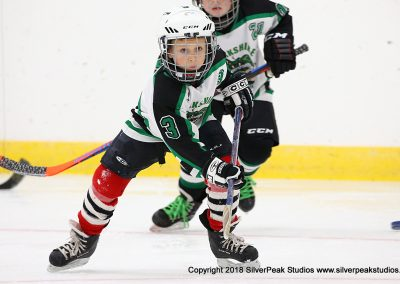 SilverPeak Studios Berkshire Mite Jamboree 2018 Samples Action shots hockey photography PRE_0028