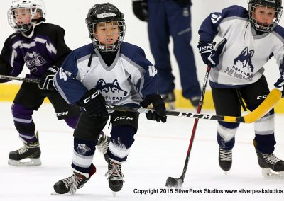 SilverPeak Studios Berkshire Mite Jamboree 2018 Samples Action shots hockey photography PRE_0720