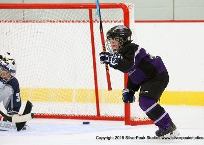 SilverPeak Studios Berkshire Mite Jamboree 2018 Samples Action shots hockey photography PRE_0835