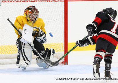 SilverPeak Studios Berkshire Mite Jamboree 2018 Samples Action shots hockey photography PRE_0968