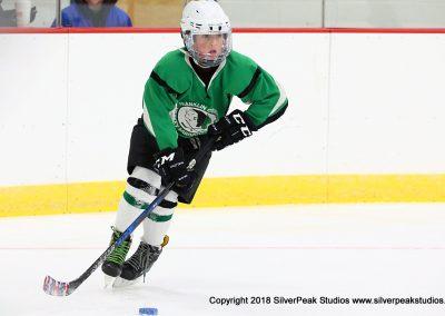 SilverPeak Studios Berkshire Mite Jamboree 2018 Samples Action shots hockey photography PRE_5258
