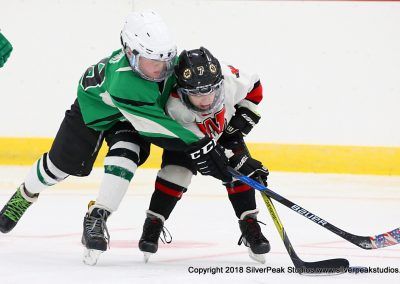 SilverPeak Studios Berkshire Mite Jamboree 2018 Samples Action shots hockey photography PRE_5333