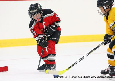 SilverPeak Studios Berkshire Mite Jamboree 2018 Samples Action shots hockey photography PRE_5909