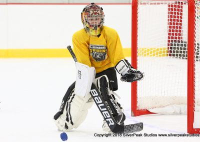 SilverPeak Studios Berkshire Mite Jamboree 2018 Samples Action shots hockey photography PRE_5933