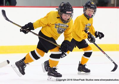 SilverPeak Studios Berkshire Mite Jamboree 2018 Samples Action shots hockey photography PRE_5979